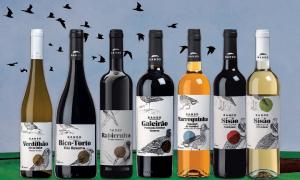 """Auchan lança primeira marca própria de vinhos, """"BANDO"""""""
